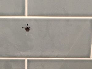 Hole in wall tile