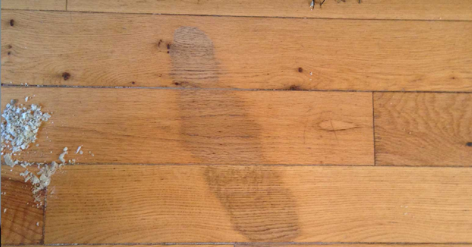 Stain to solid wood floor
