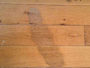 Stain on wood flooring